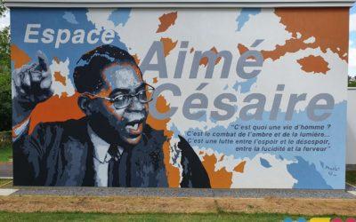 Aimé Césaire, visible du boulevard de Metz